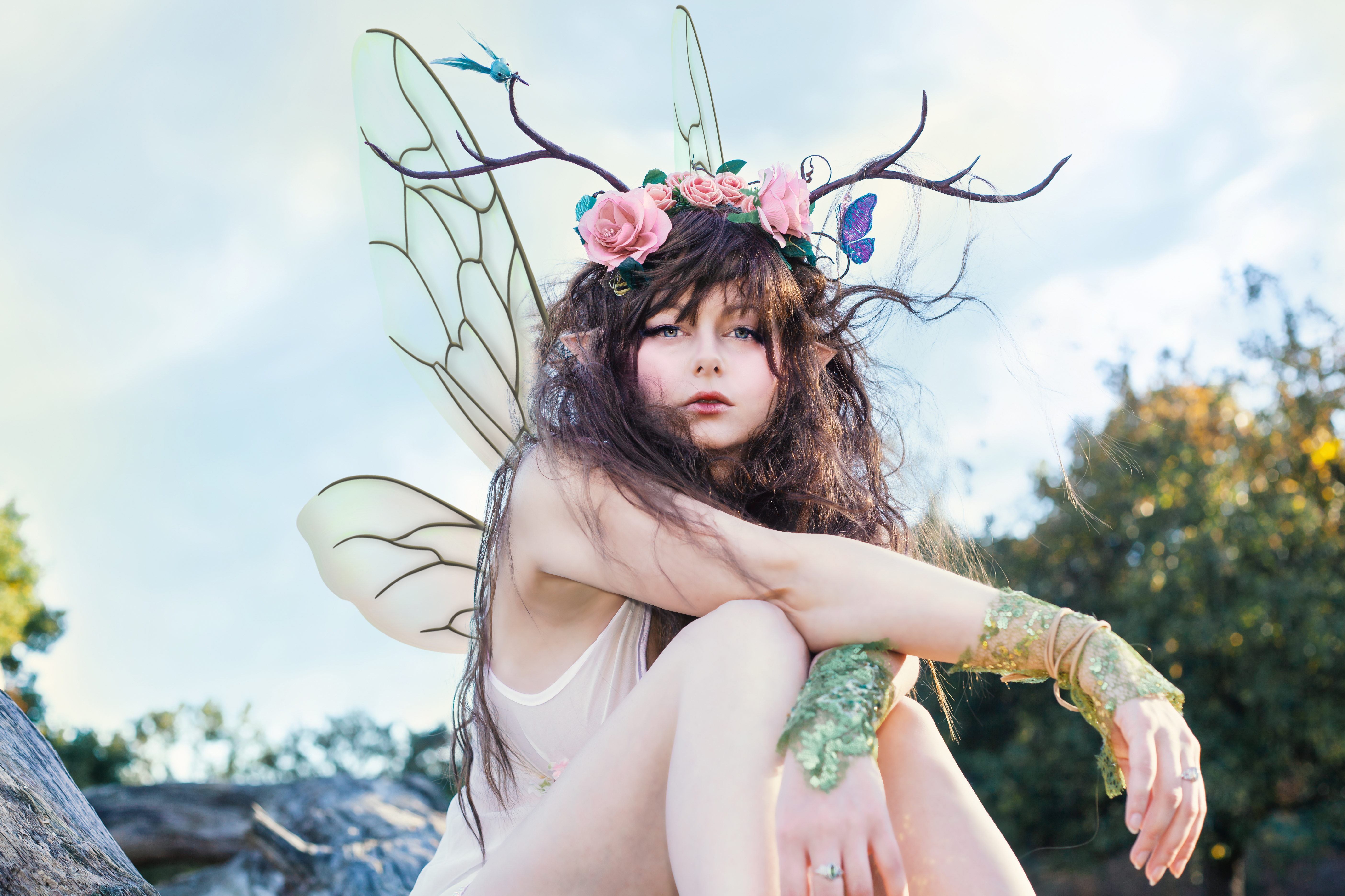rosse fairy